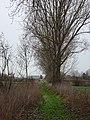 Houplin-Ancoisne, Nord-Pas-de-Calais, France (2).jpg