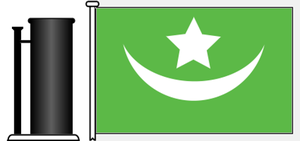 Drogheda Steam Packet Company - Image: House flag dspc