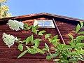 House in Sätra brunn 9.jpg