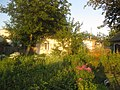 Hryhorivka, Kyivs'ka oblast, Ukraine, 07550 - panoramio.jpg