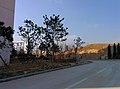 Huangdao, Qingdao, Shandong, China - panoramio (58).jpg