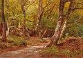 Hugo Darnaut - The Path in the Wood.jpg