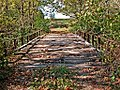I found another old bridge (1800253983).jpg