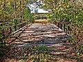 I found another old bridge (1800253983).jpg