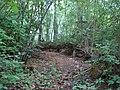 Idzepoles kapi, Kaunatas pagasts, Rēzeknes novads, Latvia - panoramio - M.Strīķis (2).jpg
