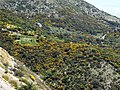 In the mountains of Lefkada, pic7.JPG