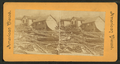 In the track of a Kansas cyclone, U.S.A, from Robert N. Dennis collection of stereoscopic views.png