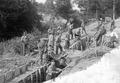 Infanterie beim Bau von Schützengräben - CH-BAR - 3237033.tif