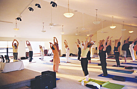 An Integral Yoga Hatha course