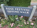 International Rose Test Garden in Portland, Ore. (2013) - 09.JPG