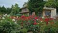 Ishida Rose Garden in Odate City 20190615a.jpg
