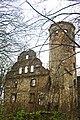 Jędrzychowice, ruiny dworu (Hennersdorf-Schlossruine-2).jpg