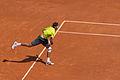 JM Del Potro - Roland-Garros 2012-IMG 3479.jpg
