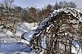 Jabłonna - Smródka zimą - panoramio.jpg