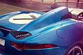 Jaguar - Project 7 (9283839908).jpg