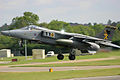 Jaguar - RIAT 2004 (3570599973).jpg