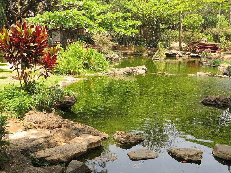 File:Jardim Japonês em Caldas Novas.jpg