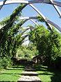 Jardin de la chapelle blanche.jpg