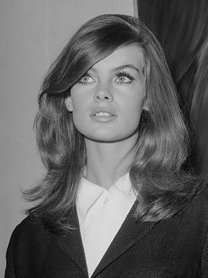 Model (person) - Jean Shrimpton in 1965