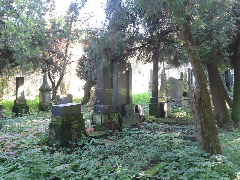 File:Jewish cemetery in Prostějov 3.jpg