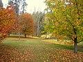 John A. Finch Arboretum - IMG 6863.JPG
