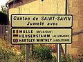 Jumelage Canton de Saint-Savin.jpg