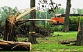 June 5 2010 tornado aftermath.jpg
