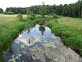 Kėkštai 30164, Lithuania - panoramio.jpg