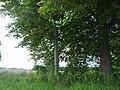 Kříž mezi Kovářovem a Vepicemi - panoramio.jpg