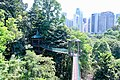 KL Forest Eco-Park Canopy Walk 8.jpg