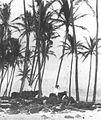 Kalakaua at Heiau o Keohoʻolu, North Kona, Hawaii.jpg