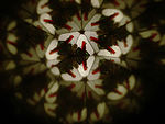 Pattern as seen through a kaleidoscope tube