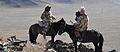 Kazakh-Mongolian Eagle Hunters.JPG