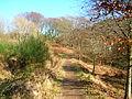 Kirktonhall Glen path.JPG