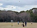 Kite flying in Osaka Castle Park.jpg