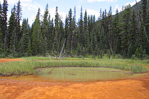 Kootenay National Park - One of the Paint Pots