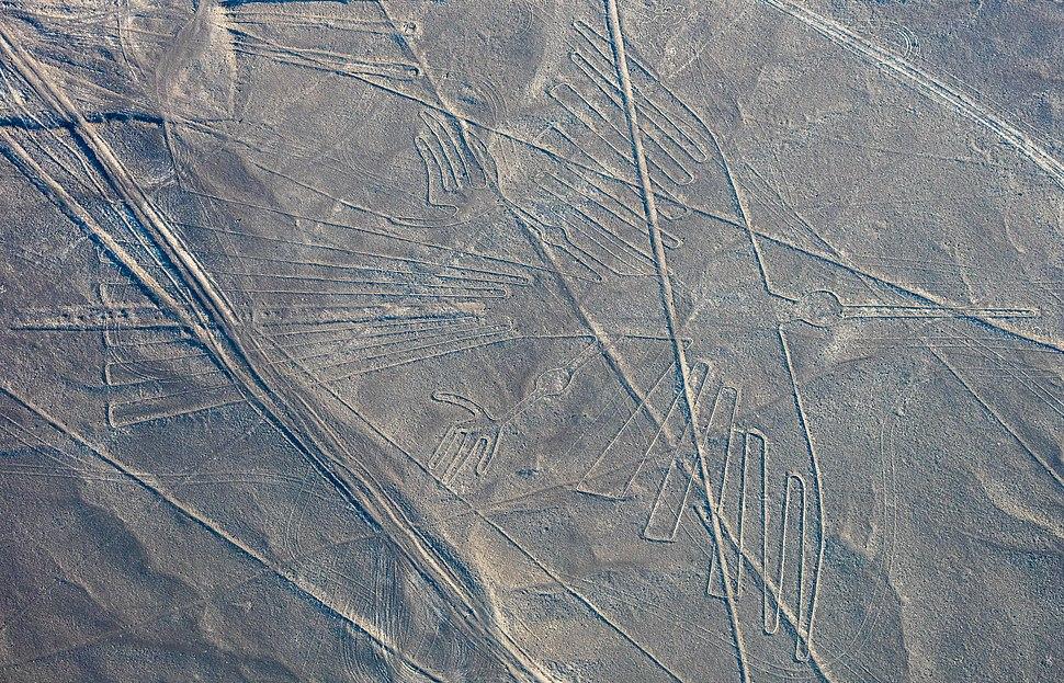 Líneas de Nazca, Nazca, Perú, 2015-07-29, DD 55
