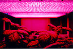 LED panel and plants.jpg