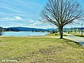 Labergement-Sainte-Marie. Lac de Rémoray vu du parking. 2014-03-28.jpg