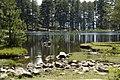 Lac de Creno - panoramio - rené mikkers (4).jpg
