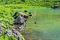 Lac de Tavaneuse 15.jpg