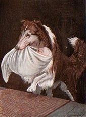 A dog carries a baby wrapped in white cloths in its mouth.