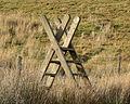 Ladder stile Snowdonia.jpg