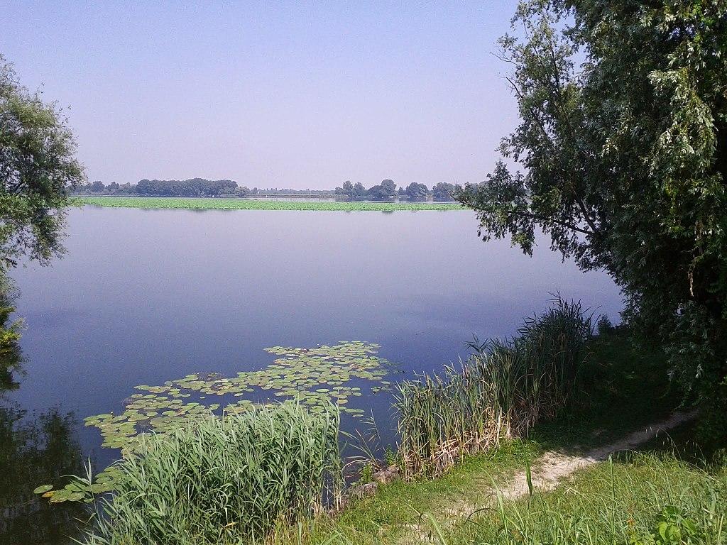 Lago Superiore, Mantova - panoramio