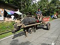 Laguna,Quezonjf9721 30.JPG