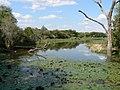 Lake Panic (393952446).jpg