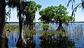 Lake Russell view (13947327898).jpg