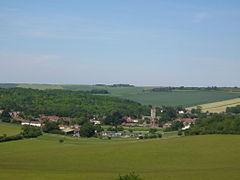 Lambourn - Lynch Wood on the left.jpg