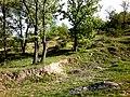 Landscape belovodica 1.jpg