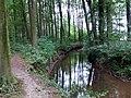 Landschaftsschutzgebiet Waldgebiete bei Dielingdorf und Handarpe LSG OS 00025 Datei 13.jpg